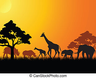 África animal silueta