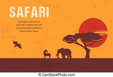 África. Información y antecedentes
