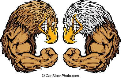 águila, mascotas, doblar, caricatura, brazos