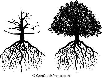 Árbol aislado con raíces