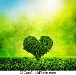 Árbol con forma de corazón creciendo en la hierba verde. Amor, naturaleza, ambiente