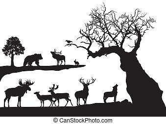 Árbol con vida salvaje aislado