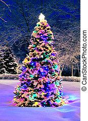 Árbol de Navidad afuera