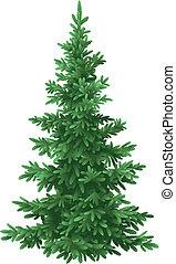 Árbol de Navidad, aislado