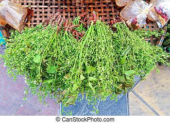 Árbol de neem siameses en el mercado