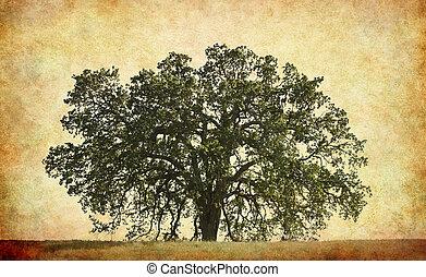 Árbol de roble con fondo texturizado