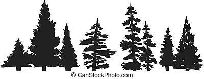 árbol, silueta, pino