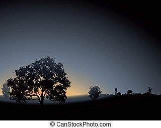 Árbol solitario en la niebla matinal.