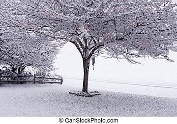 Árbol y nieve