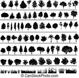 Árboles, arbustos, hierba