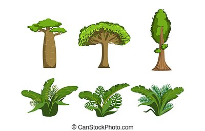 Árboles de selva verde y palmas fijas, plantas tropicales de bosque ilustración vectorial