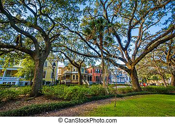 Árboles en Fortsyth Park, en Savannah, Georgia.