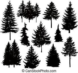 árboles, silueta, pino, diferente
