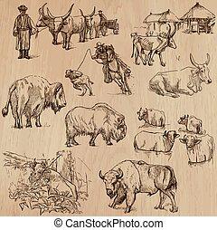-, mano, vector, ganado, vacas, dibujado, paquete