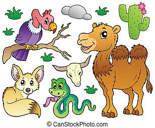 1, animales, desierto, colección
