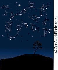 1, constelaciones