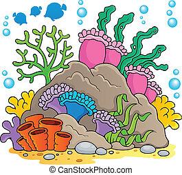 1, coral, tema, imagen, arrecife