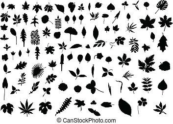 100 hojas