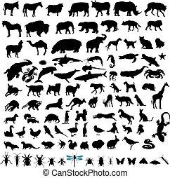 100 siluetas animales