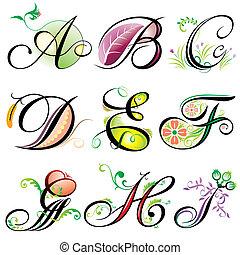 a-i, alfabetos, elementos