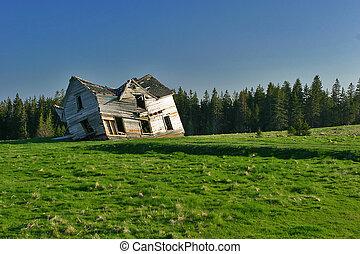Abandonado en casa