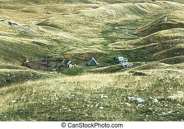 abandonado, verano, granja