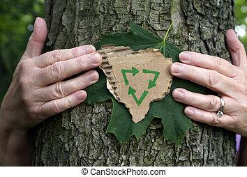 Abraza árboles