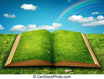 Abre el libro de magia