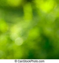 Abstracción de fondo verde con bokeh natural