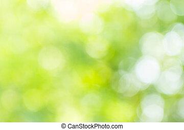 Abstract bokeh y borroso fondo de la naturaleza verde