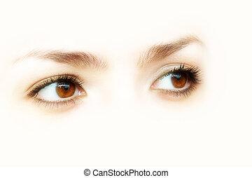 Abstrae los ojos marrones