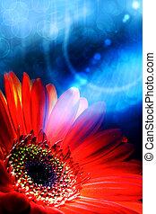 Abstrae los orígenes de verano con la flor gerbera