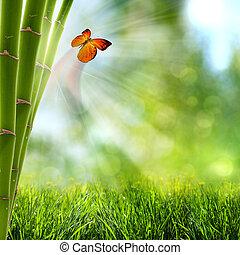 Abstraer fondos de verano con bosques de bambú y mariposa