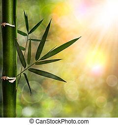 Abstraer los orígenes naturales con follaje de bambú