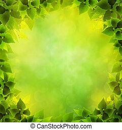 Abstraer los orígenes naturales con follaje verde como forma