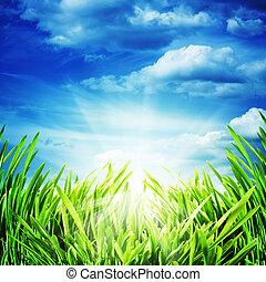 Abstraer los orígenes naturales con sol brillante y pradera verde