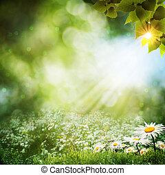 Abstraer los pasados de verano con flores de margarita