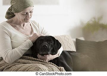 abuela, pañuelo, acariciando, perro