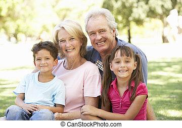 abuelos, el gozar, parque, día, nietos