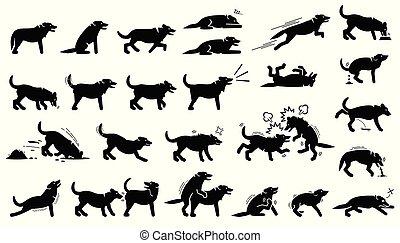 Acciones de perros, reacciones, posturas y lenguajes corporales.