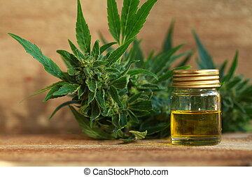aceite, cannabis, cáñamo