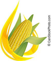 Aceite de maíz. Una gota de aceite estilizada y una bobina de maíz.