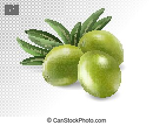 aceitunas, hojas, transparente, 3d, photo-realistic, verde, vector, fondo., aislado