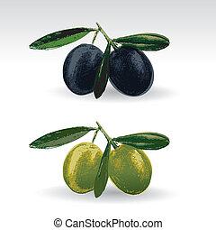 Aceitunas verdes y negras