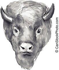 acuarela, bisonte americano, cabeza
