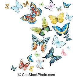 acuarela, mariposas