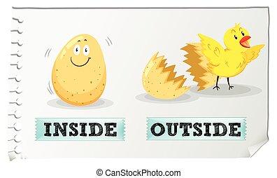 Adjetivos opuestos dentro y fuera