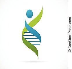 ADN, símbolo genético, ícono del hombre