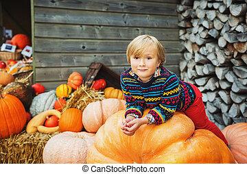 Adorable niñito de 5-6 años eligiendo calabaza Halloween en el mercado agrícola