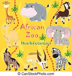 africano, animals., herbívoro, zoo.